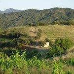 hiking trails through vineyards around Gratallops