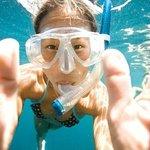 Snorkelling in Nelson Bay