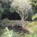 Naumai Park