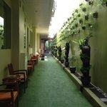 Corridor outside treatment rooms