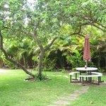 Hale Nalo grounds