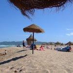Beach at El Delphin Verde