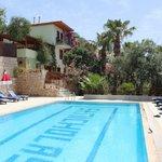 Delfin Hotel - pool view