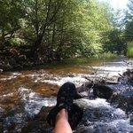 Enjoying Oak Creek!