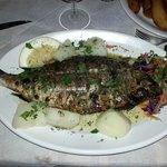 Wil je lekkere vis,ga naar Minore