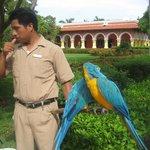 Le soigneur de la faune dans les magnfiques jardins.