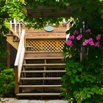 Stairway to the Patio