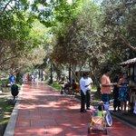 El Olivar Park next  to the hotel