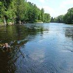 nager contre le courant de la rivière