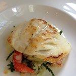 Turbot dish -