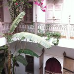 Riad's courtyard in June