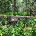 bridge through the gardens