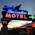 The unique Blue Swallow vintage neon sign