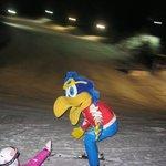 scuola sci pampeago