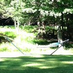 The Hammock By The Pond