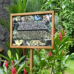 The wildlife preserve