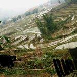 paysages ...une nature vraie..!!