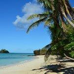 Paddy's Island