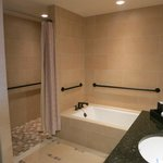 Master Bathroom - Corner Suite #840 6-28-13