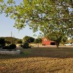 Guest House & Barn