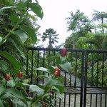 Entrance to Eco Gardens