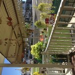 Terrace ❤