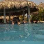 swim-up bar at main pool
