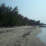 accompanying beach area