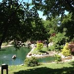 Dubuque Arboretum and Botanical Gardens Foto