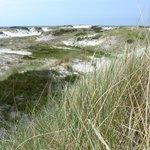 Strandmarken Dueodde