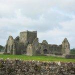 Hoar Abbey from Cashel Lodge