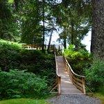 bridge to the deck