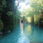 Baray Villa guests private pools