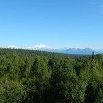 View of Denali from main lodge