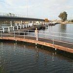 Boardwalk under the Collie River Bridge