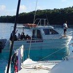 Beluga Diving picking up divers from Sailboat in Port Maurelle, Vava'u, Tonga