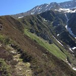 view an hour above the Le Tour cable car on the ridge leading to the ALbert Premier hut path