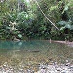 """The Blue Hole"" - freshwater swimming hole 5 mins from Prema Shanti"