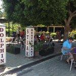 Billede af Dolphin Restaurant Cafe & Bar