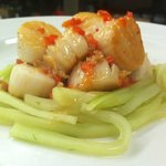 Seared Scallops with Cucumber-Dill Salad