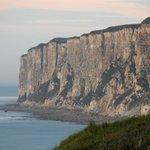 The view towards Bempton Cliffs