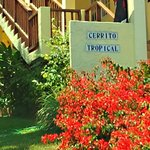 Cerrito Tropical
