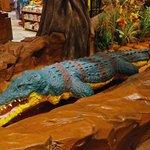 Crocodile (which was under repair).