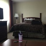 Staybridge Suites Tampa East - Brandon Photo