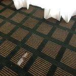 BEST WESTERN PLUS Sovereign Hotel Foto