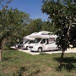 Photo of Il Noceto B&B - Sosta Camper