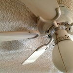 Hair and dust on the ceiling fan. Never seen a ceiling fan in a hotel room before