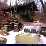 Pollywogg Holler Eco-Resort