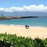 Ritz-Carlton Kapalua beach