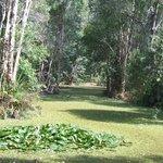 Beautiful acres of gardens to walk through